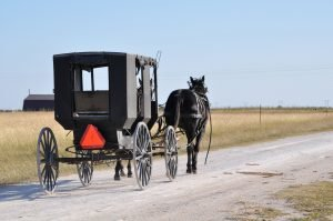 ever-wondered-why-the-amish-dont-get-cancer-this-is-why